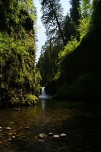 waterfall-292765_1280
